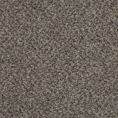Shaw Floors Value Collections Break Away (b) Net Boulder 00501_5E281