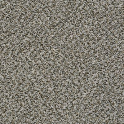 Shaw Floors Value Collections Break Away (b) Net Fossil 00531_5E281