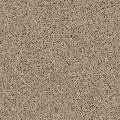 Shaw Floors Value Collections Break Away (s) Net Wheat Field 00102_5E282