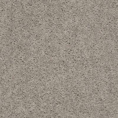 Shaw Floors Value Collections Break Away (s) Net Whisper 00112_5E282