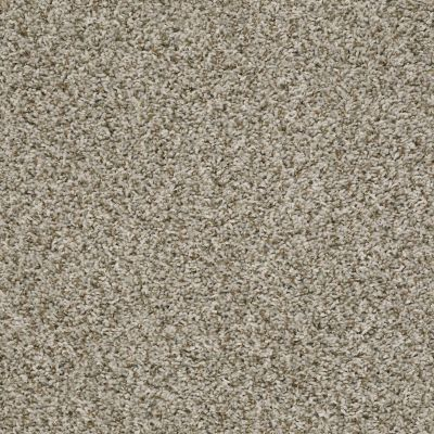 Shaw Floors Value Collections Break Away (t) Net Natural Ivory 00122_5E283