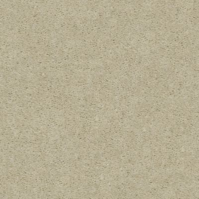 Shaw Floors Heroic Ash Blonde 00122_5E287