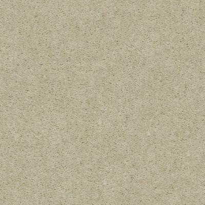 Shaw Floors Heroic Ash Blonde 00122_5E287