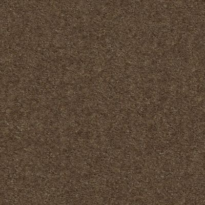 Shaw Floors Heroic Toffee 00753_5E287