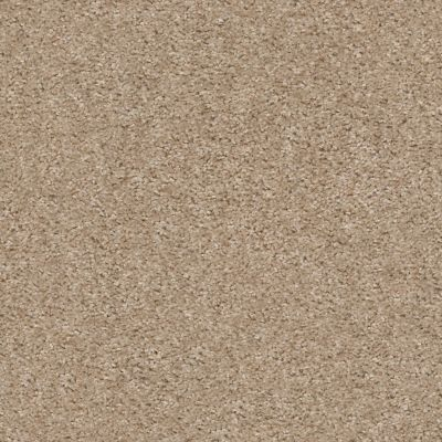 Shaw Floors Valiant Mohair 00113_5E288
