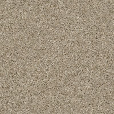 Shaw Floors Valiant Balboa Mist 00135_5E288