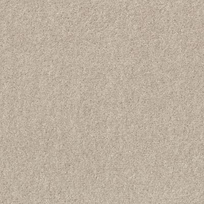 Shaw Floors Valiant Marble White 00190_5E288