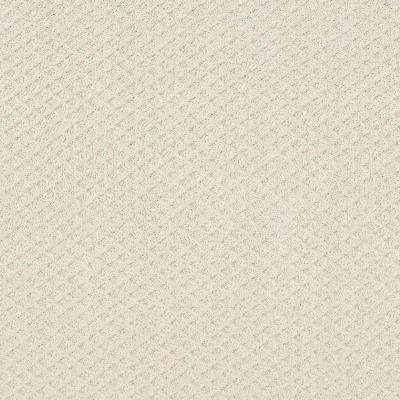 Shaw Floors Foundations Formalize Net Serene Still 00101_5E301