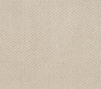 Shaw Floors Foundations Mainstay Net Washed Linen 00103_5E302