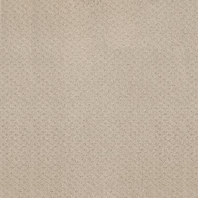 Shaw Floors Foundations Mainstay Net Butter Cream 00107_5E302