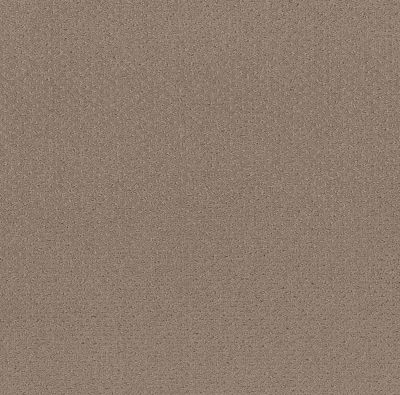 Shaw Floors Value Collections Mainstay Net Desert View 00701_5E302