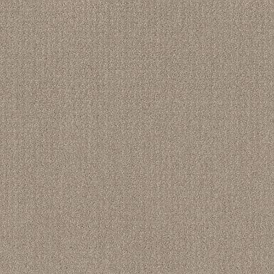 Shaw Floors Simply The Best Translate Sand Swept 00109_5E328