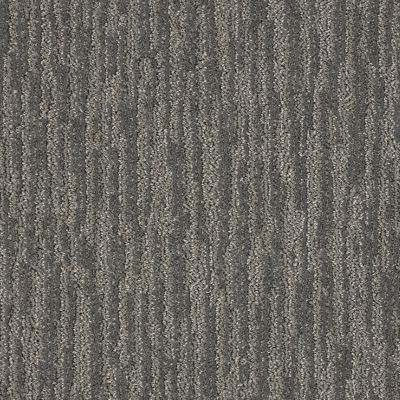 Shaw Floors Value Collections Easy Fit Net Dirt Road 00701_5E329