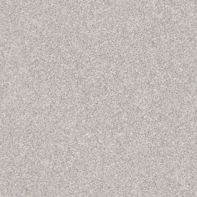 Shaw Floors Value Collections Make It Mine II Net Soft Fleece 00120_5E332