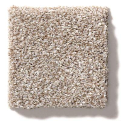 Shaw Floors Value Collections Make It Mine II Net Grecian Tan 00720_5E332