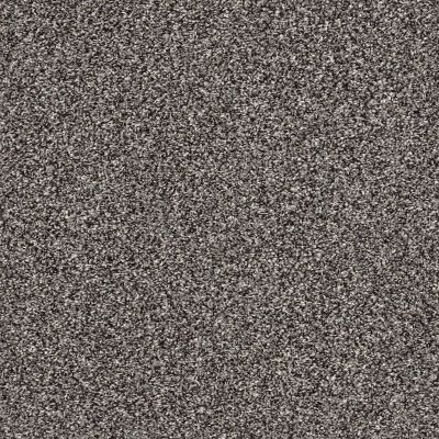 Shaw Floors Value Collections After It II Net Anchor 00501_5E334