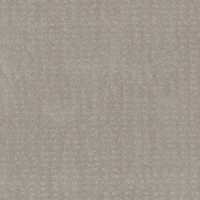 Shaw Floors Foundations Chic Nuance Split Sediment 00104_5E341