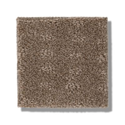 Shaw Floors Foundations Chic Nuance Raw Wood 00720_5E341