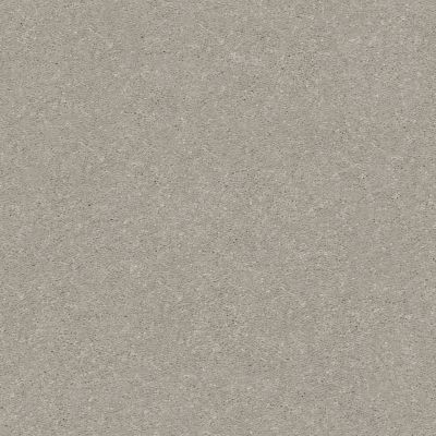 Shaw Floors Value Collections Solidify II 15 Net Greige 00106_5E344