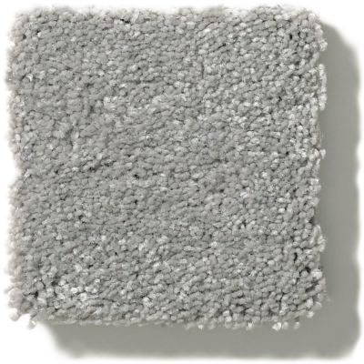 Shaw Floors Value Collections Solidify II 15 Net Dusty Trail 00503_5E344
