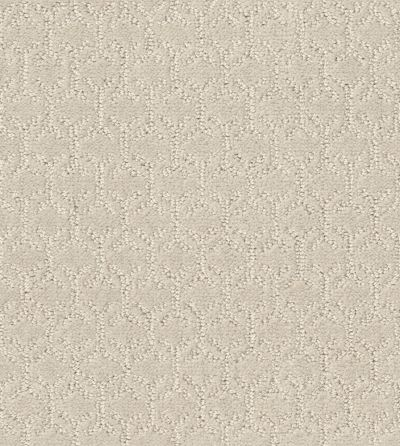 Shaw Floors Value Collections Valid Net Pearl 00103_5E347