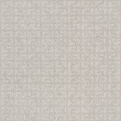 Shaw Floors Value Collections Vastly Net Stone 00104_5E348