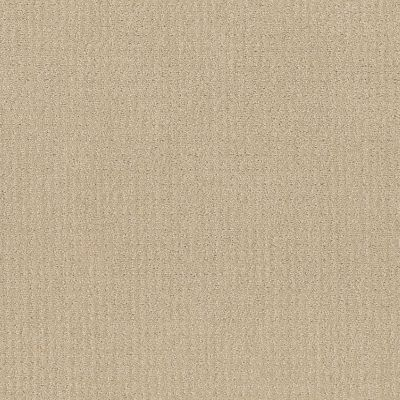 Shaw Floors Value Collections Translate Net Candle Glow 00200_5E352