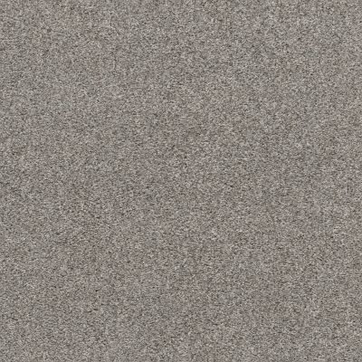 Shaw Floors Value Collections Calm Serenity I Net Split Sediment 00104_5E353