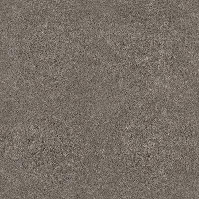 Shaw Floors Value Collections Calm Serenity II Net Dark Maple 00702_5E354