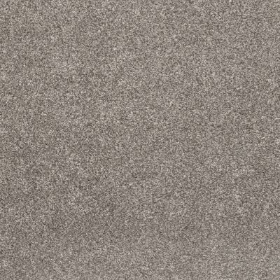 Shaw Floors Value Collections Calm Simplicity II Net Washed Linen 00113_5E356