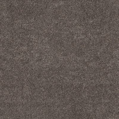 Shaw Floors Value Collections Calm Simplicity II Net Antelope 00714_5E356