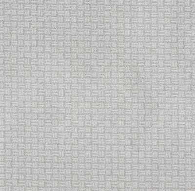 Shaw Floors Value Collections Soothing Surround Net Reflection 00400_5E358