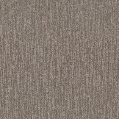 Shaw Floors Value Collections Nature Within Net Dark Maple 00702_5E359