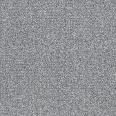 Shaw Floors Value Collections Secret Passage Net Stormy Breeze 00501_5E360