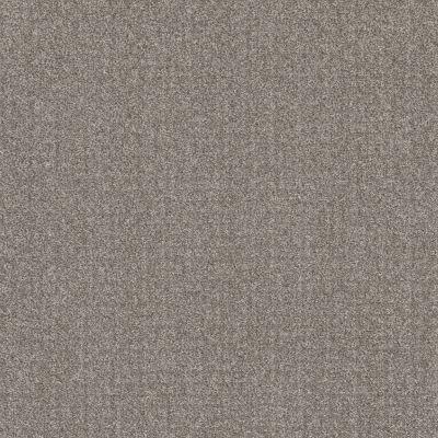 Shaw Floors Value Collections Secret Passage Net River Run 00700_5E360
