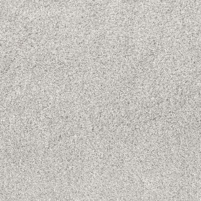 Shaw Floors Value Collections Quiet Sanctuary Net Snow Cap 00100_5E361
