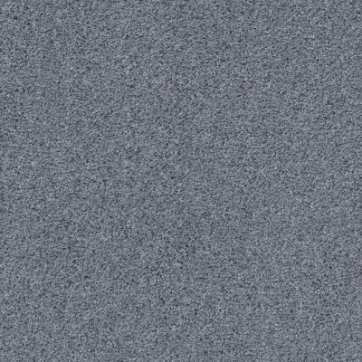 Shaw Floors Value Collections Quiet Sanctuary Net Thundered Steel 00401_5E361