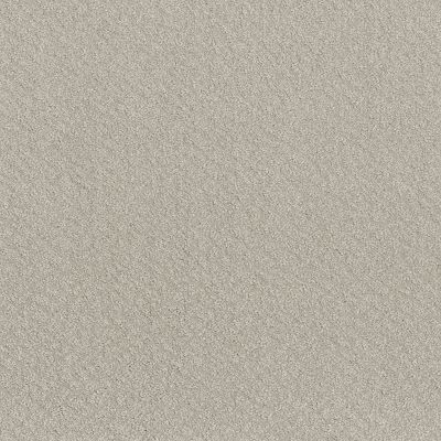 Shaw Floors Value Collections Chic Shades Net Winters Dawn 00102_5E363