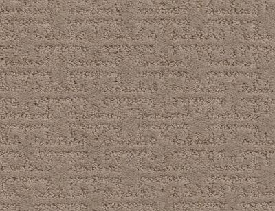 Shaw Floors Value Collections Zenhaven Net Tumbleweed 00749_5E366