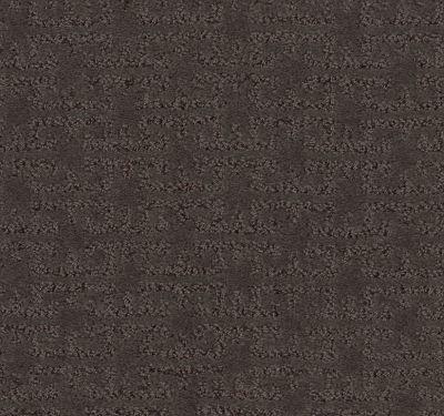 Shaw Floors Value Collections Zenhaven Net Burma Brown 00752_5E366