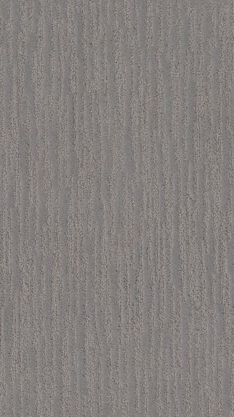 Shaw Floors Value Collections On The Horizon Net Grounded Gray 00536_5E367