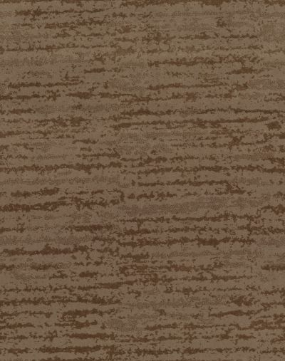 Shaw Floors Value Collections Winter Solace Net Raw Wood 00720_5E369