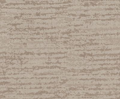 Shaw Floors Value Collections Winter Solace Net Sandstone 00743_5E369