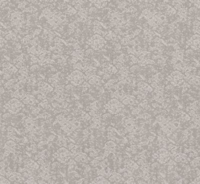 Shaw Floors Value Collections Free Spirit Net Minimal 00514_5E371