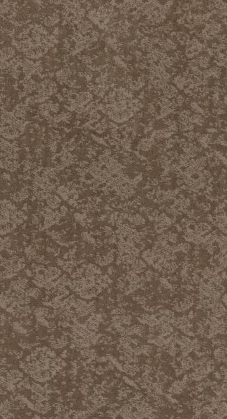 Shaw Floors Value Collections Free Spirit Net Tumbleweed 00749_5E371