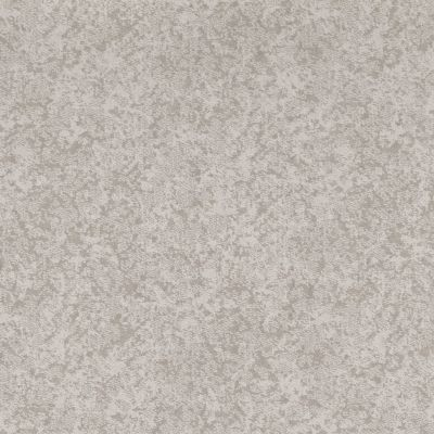 Shaw Floors Value Collections State Of Mind Net Minimal 00514_5E373