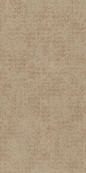 Shaw Floors Value Collections Artistic Presence Net Natural Beauty 00721_5E374