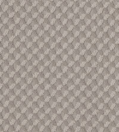 Shaw Floors Value Collections Inspired Design Net Stucco 00724_5E379
