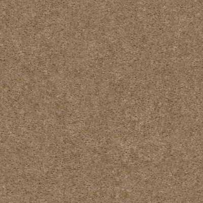 Shaw Floors Value Collections Heroic Net Clay 00701_5E386