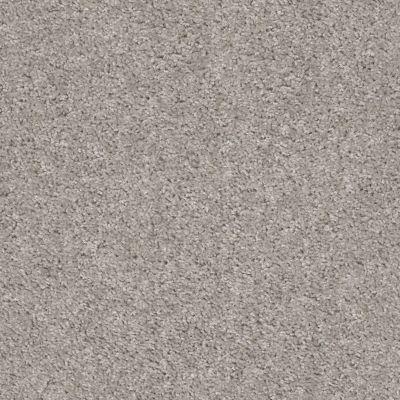 Shaw Floors Value Collections Valiant Net La Paloma 00192_5E387